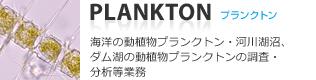 プランクトン